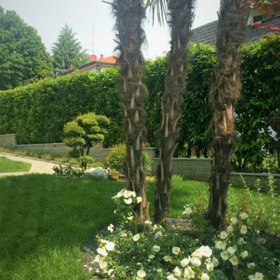 Creazione_giardini_privati_3