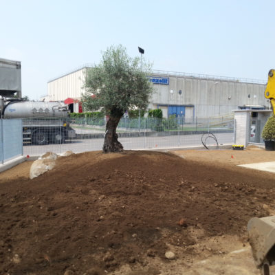 Greentek_Creazione_Giardini05